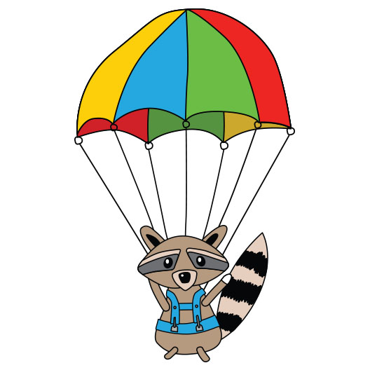 raccoon_chute